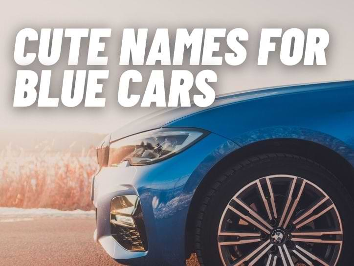 Cute Names For Blue Cars