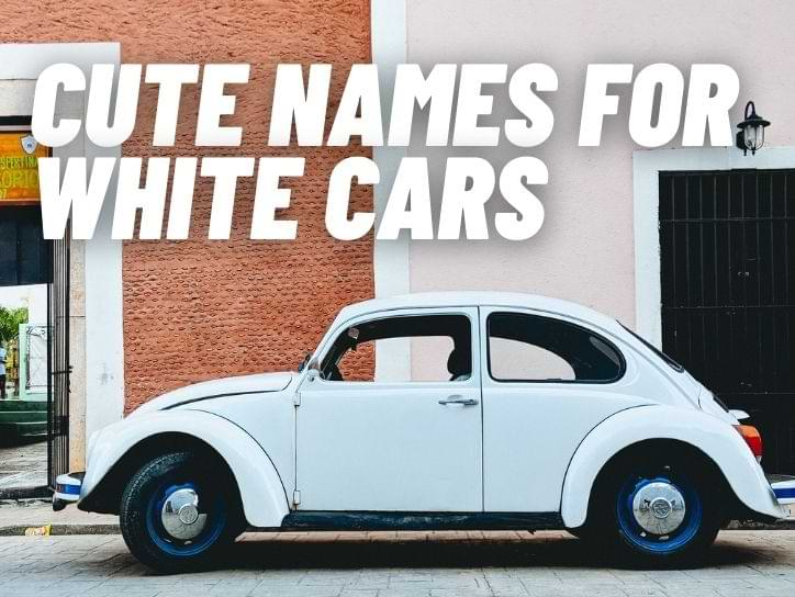 Cute Names For White Cars