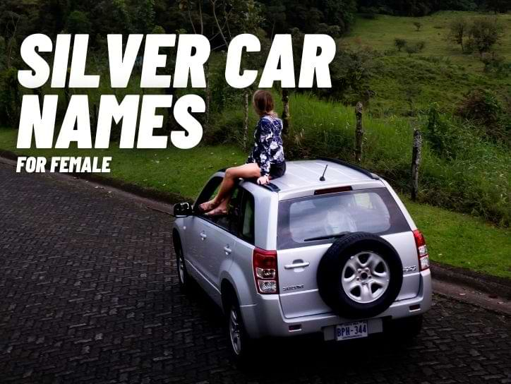 Silver Car Names For Females